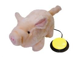 Percy-das-Schwein.jpg