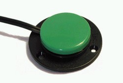 SpecsTaster-Grün.jpg