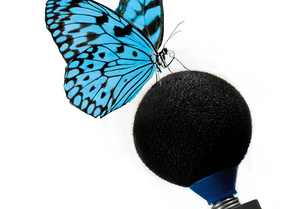 butterfly_protos